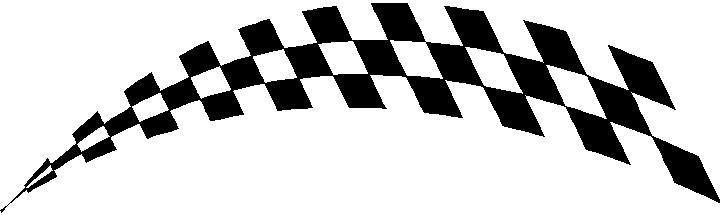 Checkered Flag Decal Sticker 39