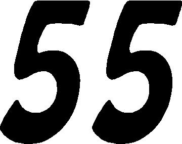 Numerology Number 55