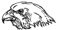 Hawks / Falcons Mascot Decal / Sticker 3