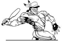 Baseball Braves / Indians / Chiefs Mascot Decal / Sticker ba5