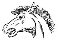 Horse Mascot Head Decal / Sticker 3