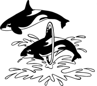 Killer Whales Mascot Decal / Sticker