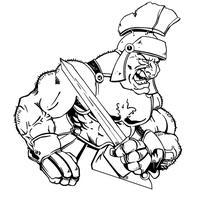 Paladins / Warriors Misc Mascot Decal / Sticker 1