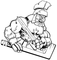 Hockey Paladins / Warriors Mascot Decal / Sticker 1 ^This white rectangle is NOT part of the decal^