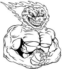 Basketball Comets Mascot Decal / Sticker 6