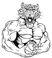 Basketball Leopards Mascot Decal / Sticker 4