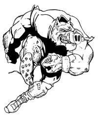 Football Razorbacks Mascots Decal / Sticker 4