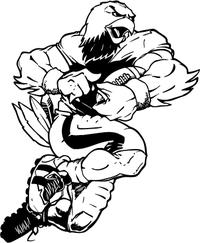 Football / Falcons Hawks Mascot Decal / Sticker