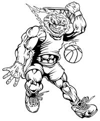 Basketball Comets Mascot Decal / Sticker 5