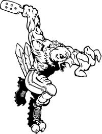 Cricket Hawks / Falcons Mascot Decal / Sticker