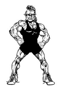 Wrestling Paladins / Warriors Mascot Decal / Sticker 1