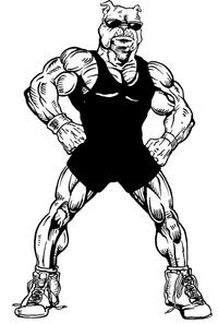 Wrestling Bulldog Mascot Decal / Sticker 4