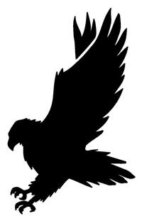 Hawks / Falcons Full Mascot Decal / Sticker 2