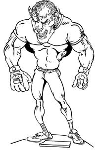 Baseball Buffalo Mascot Decal / Sticker ba3