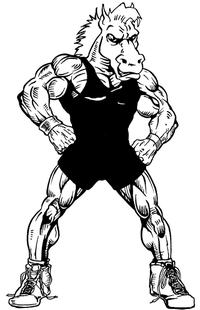Wrestling Horse Mascot Decal / Sticker 3