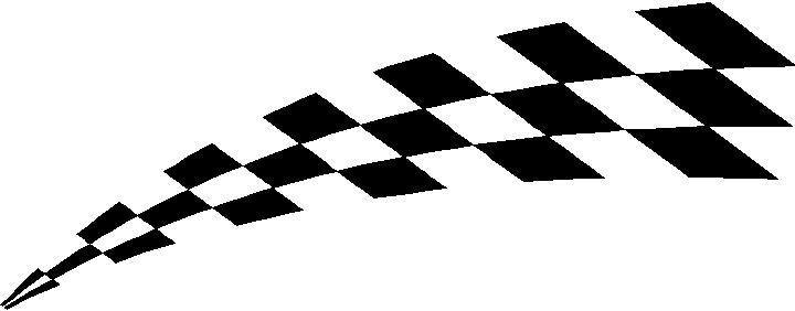 CHECKERED FLAG DECAL / STICKER 41