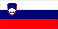 Slovenia Flag Decal / Sticker