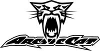 Arctic Cat Decal / Sticker 21