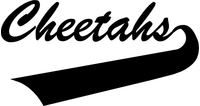 Cheetahs Mascot Decal / Sticker