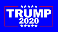 TRUMP 2020 Flag Decal / Sticker 10