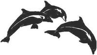 Dolphin Decal / Sticker 01
