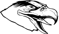 Hawks / Falcons Head Mascot Decal / Sticker