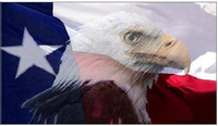 Texas Eagle Flag Decal / Sticker