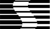 Saleen Decal / Sticker 05