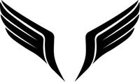 Wings Decal / Sticker 03
