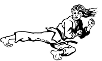 Karate Girl Decal / Sticker