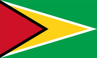 Guyana Flag Decal / Sticker 01