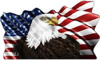 American Flag Eagle Waving Decal / Sticker 09