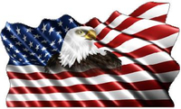 American Flag Eagle Waving Decal / Sticker 13
