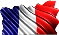 France Flag Waving Decal / Sticker