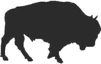 Bison Decal / Sticker 01