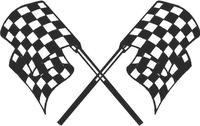 Checkered Flag Decal / Sticker 19