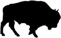 BUY CUSTOM BISON DECALS and STICKER
