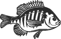 Fish Decal / Sticker 04