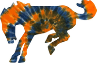 Orange and Blue Tie-Dye Broncos Decal / Sticker 03