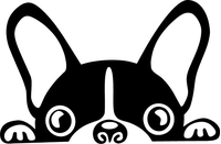 French Bulldog Decal / Sticker 01