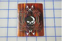 Harley-Davidson Decal / Sticker 102