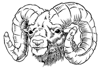 Rams Mascot Decal / Sticker 3