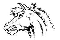 Horse Mascot Head Decal / Sticker 4