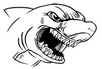 Sharks Mascot Decal / Sticker 4