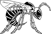 Hornet, Yellow Jacket, Bee Mascot Decal / Sticker