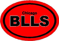 Chicago Bulls Oval Decal / Sticker
