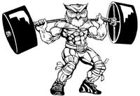 Weightlifting Owls Mascot Decal / Sticker 4