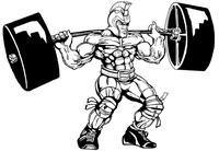Weightlifting Paladins / Warriors Mascot Decal / Sticker 4
