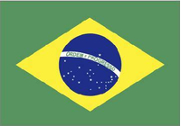 Brazilian Flag Decal / Sticker