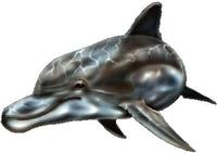 Dolphin Decal / Sticker 04